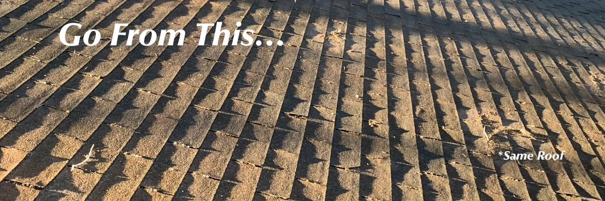 roof cleaning - go from
